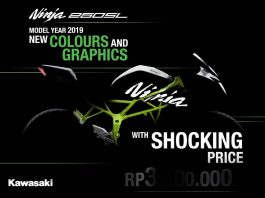 Kawasaki Ninja 250 SL MY 2019